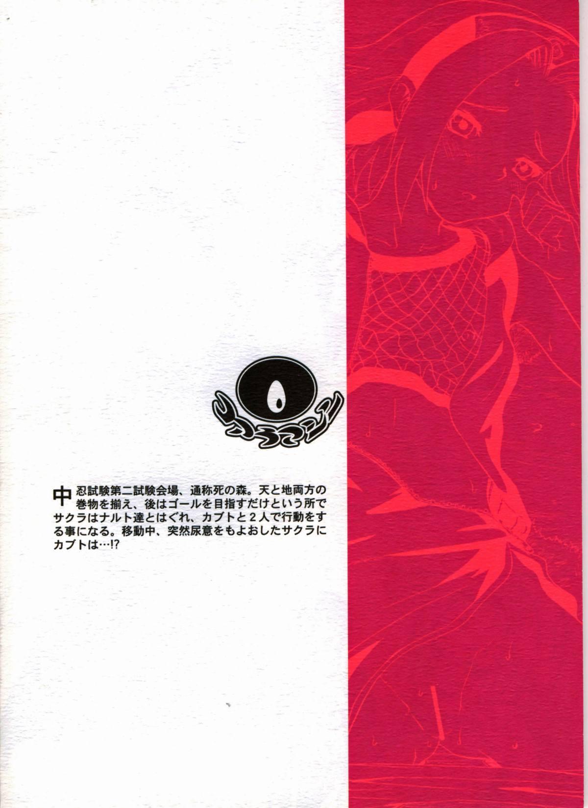 Haru Machibito | Waiting For Spring 24