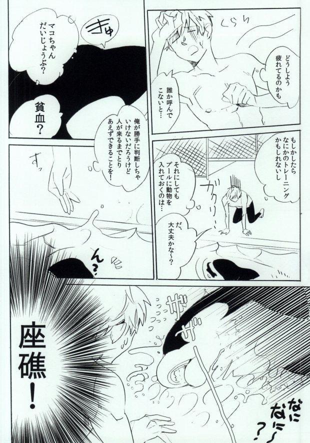 Shachi Mako! 6