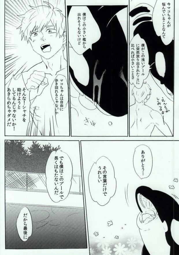 Shachi Mako! 8