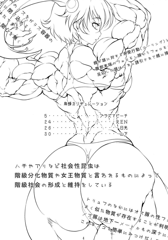 Hihou Caligulation 2