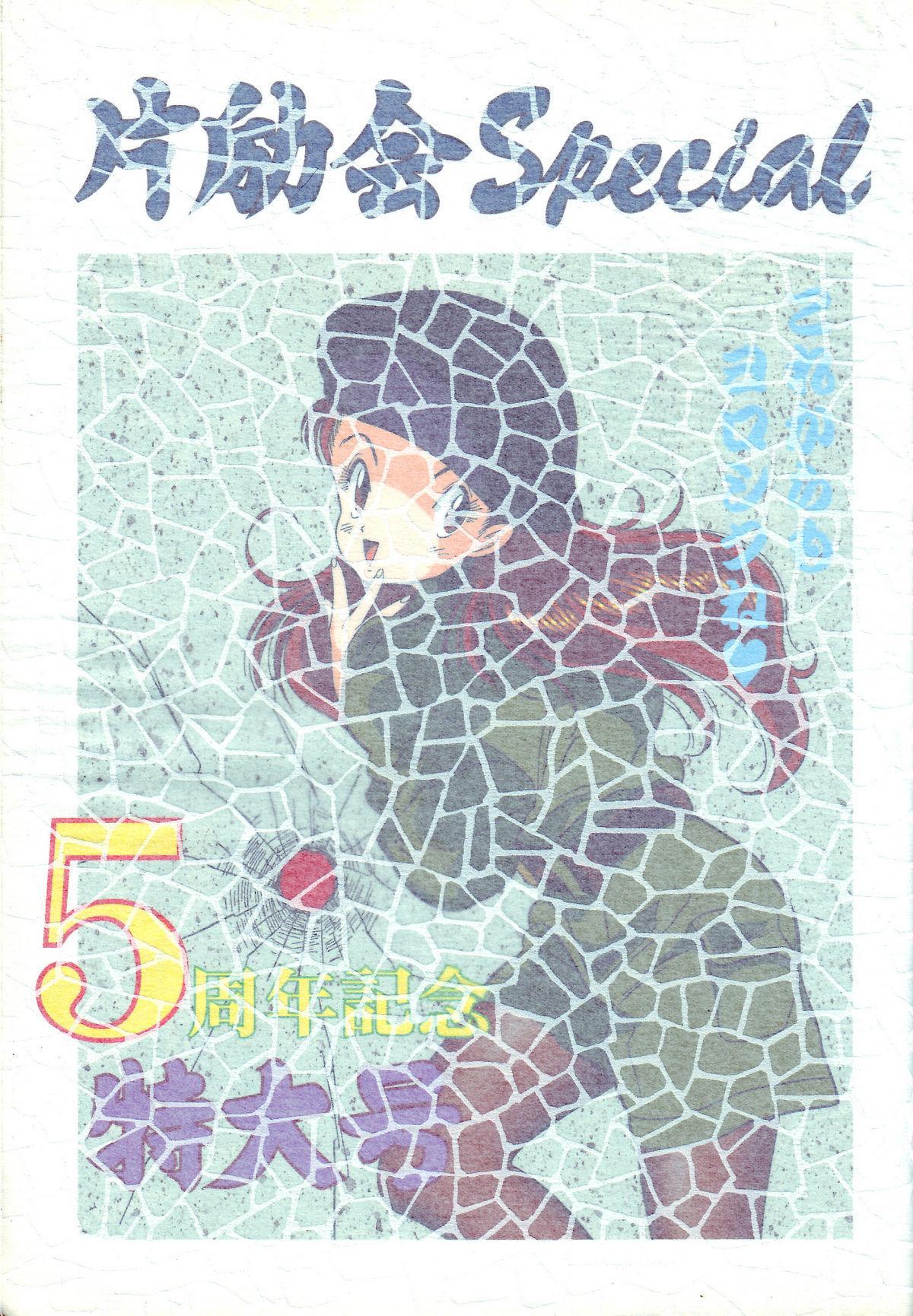 Hen Rei Kai Special Vol. 9 2