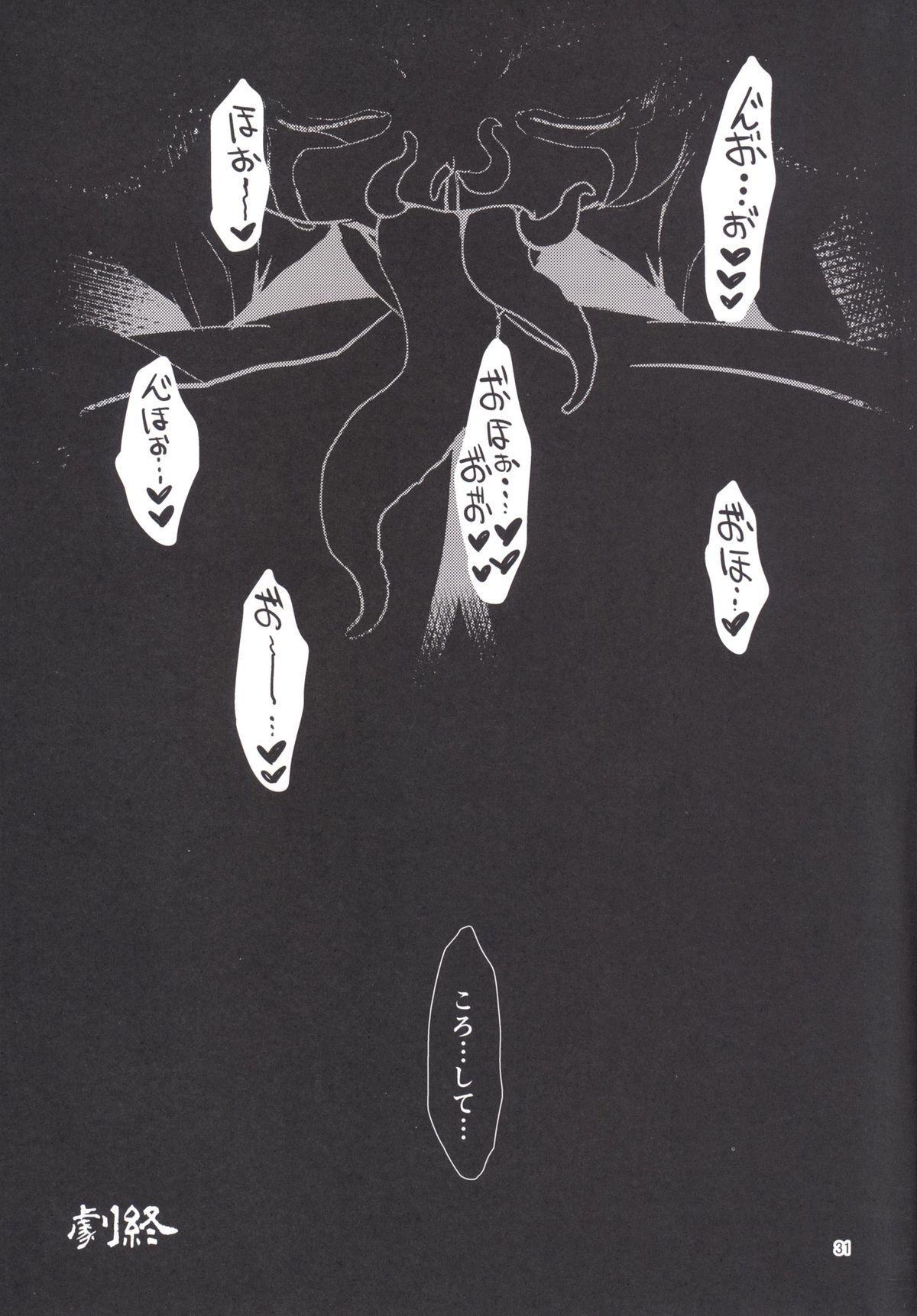 Himikaden 29