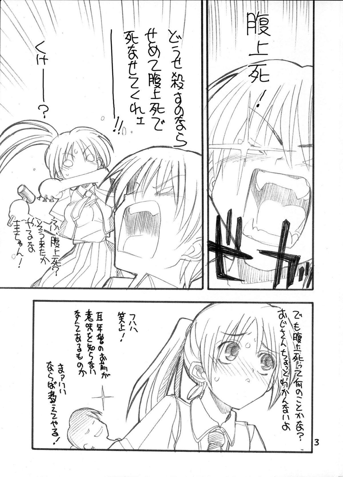 Toppatsu Tekitoukopii hon Higurashi wa ta Nagashi Happy End e no Kousatsu 2