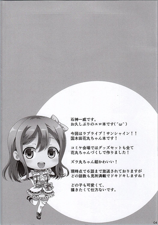 Hanamaru Mousou Nikki 2