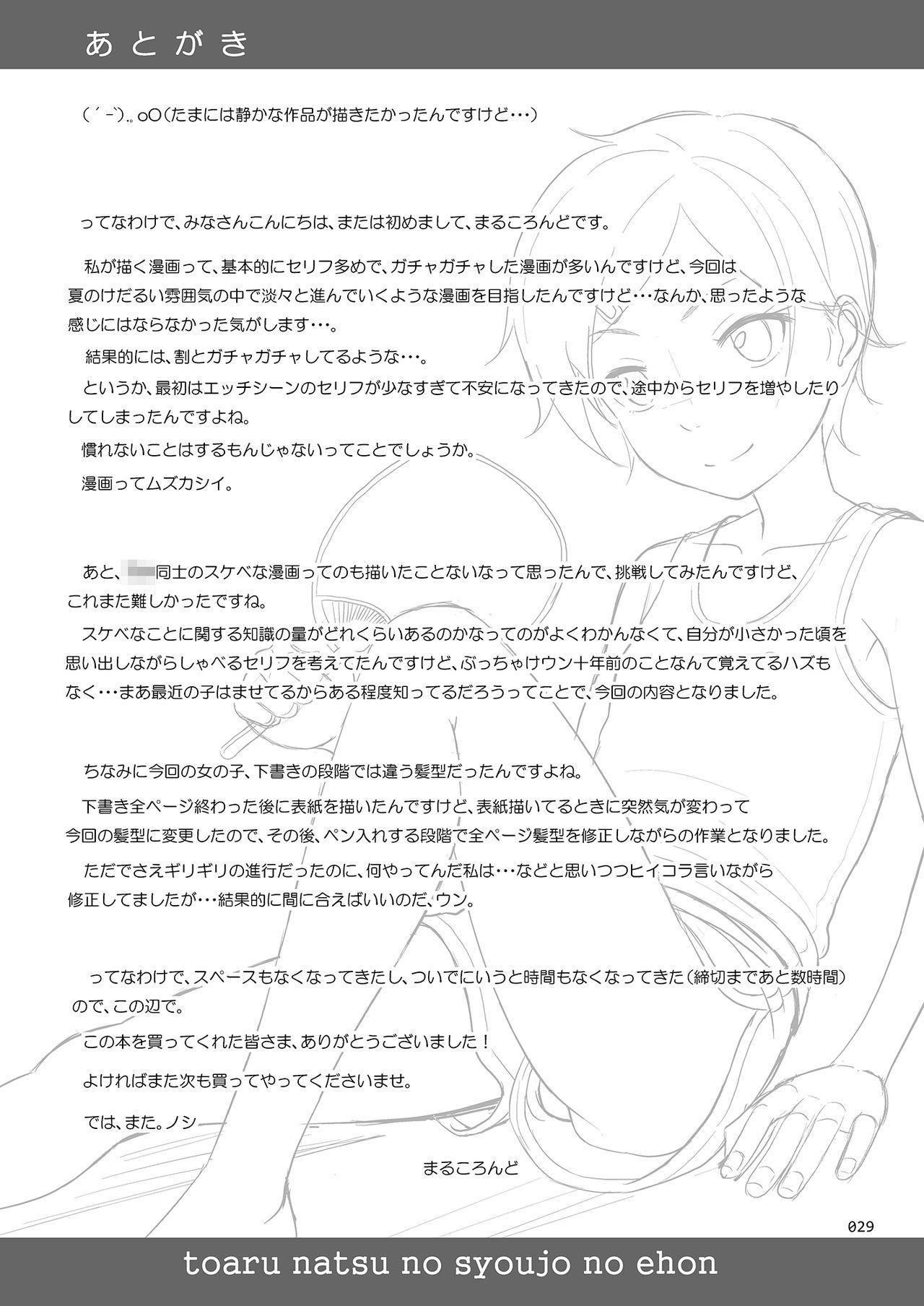 Toaru Natsu no Shoujo no Ehon 27