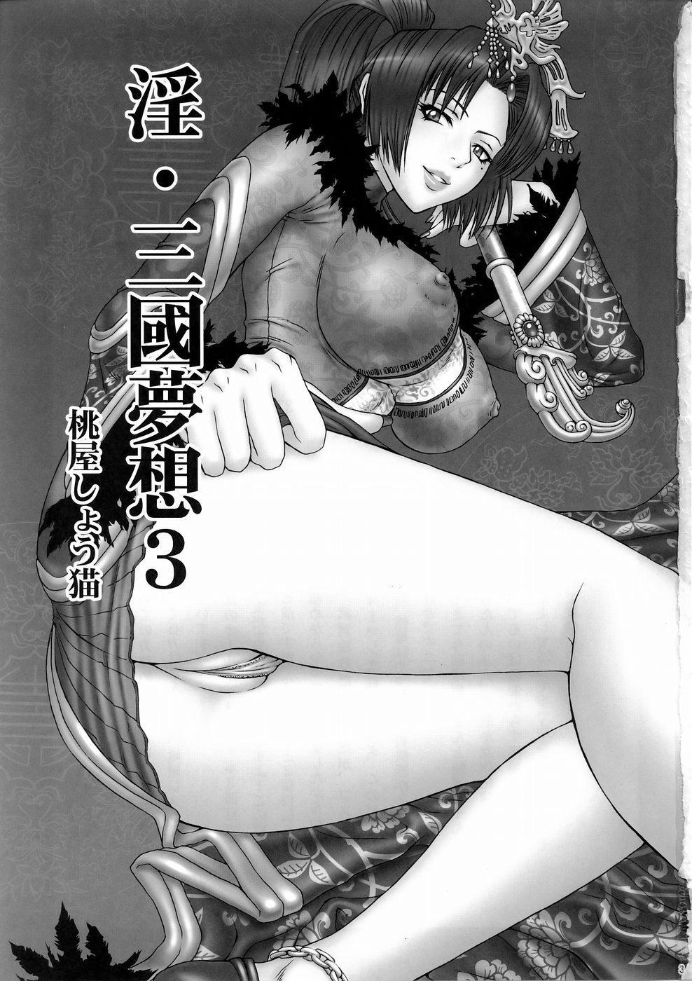 In Sangoku Musou 3 1