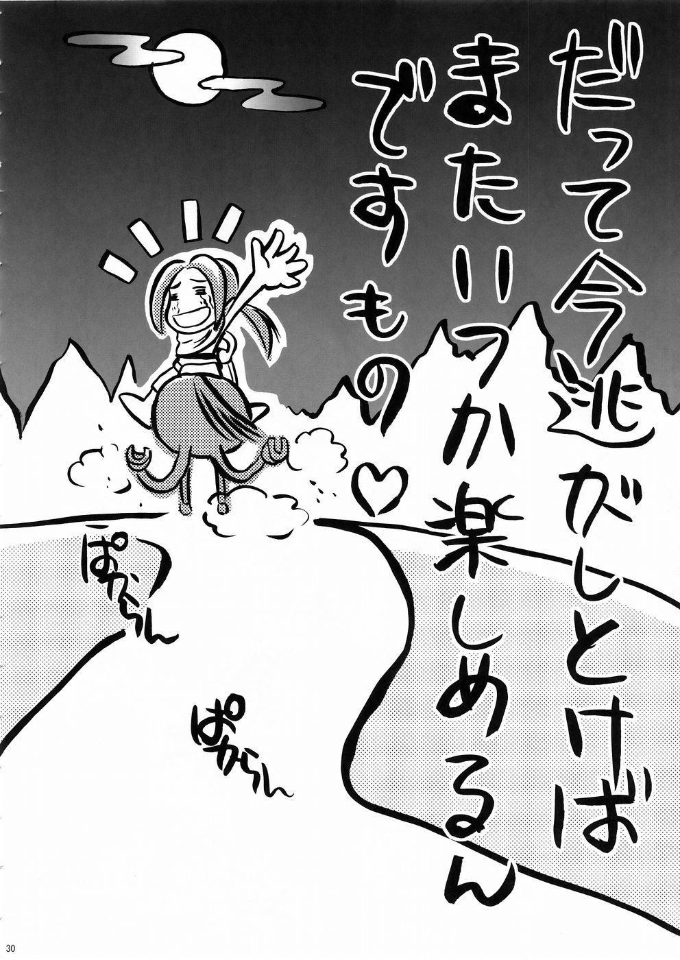 In Sangoku Musou 3 28