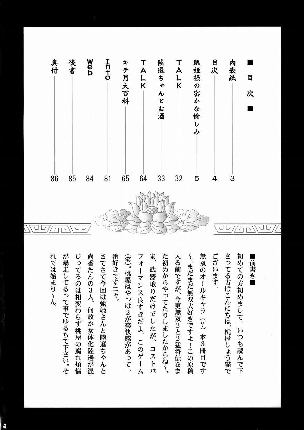 In Sangoku Musou 3 2