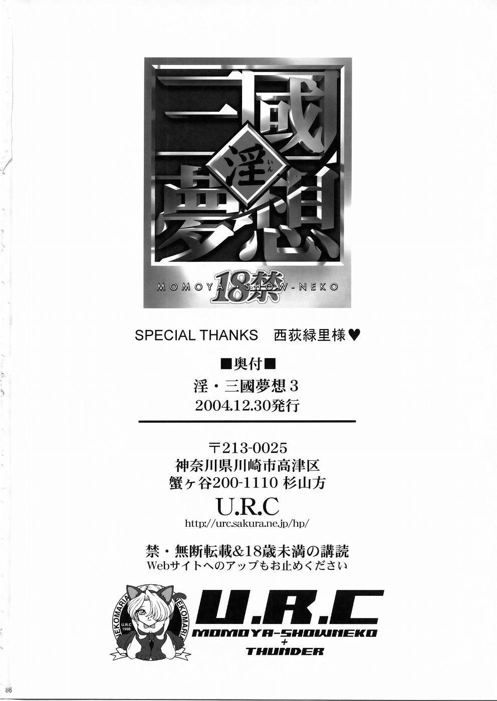 In Sangoku Musou 3 84