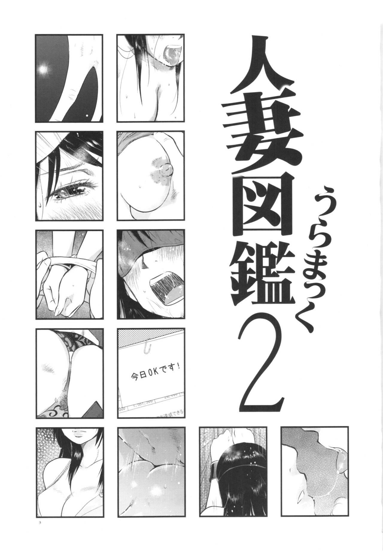 Hitozuma Zukan 2 2