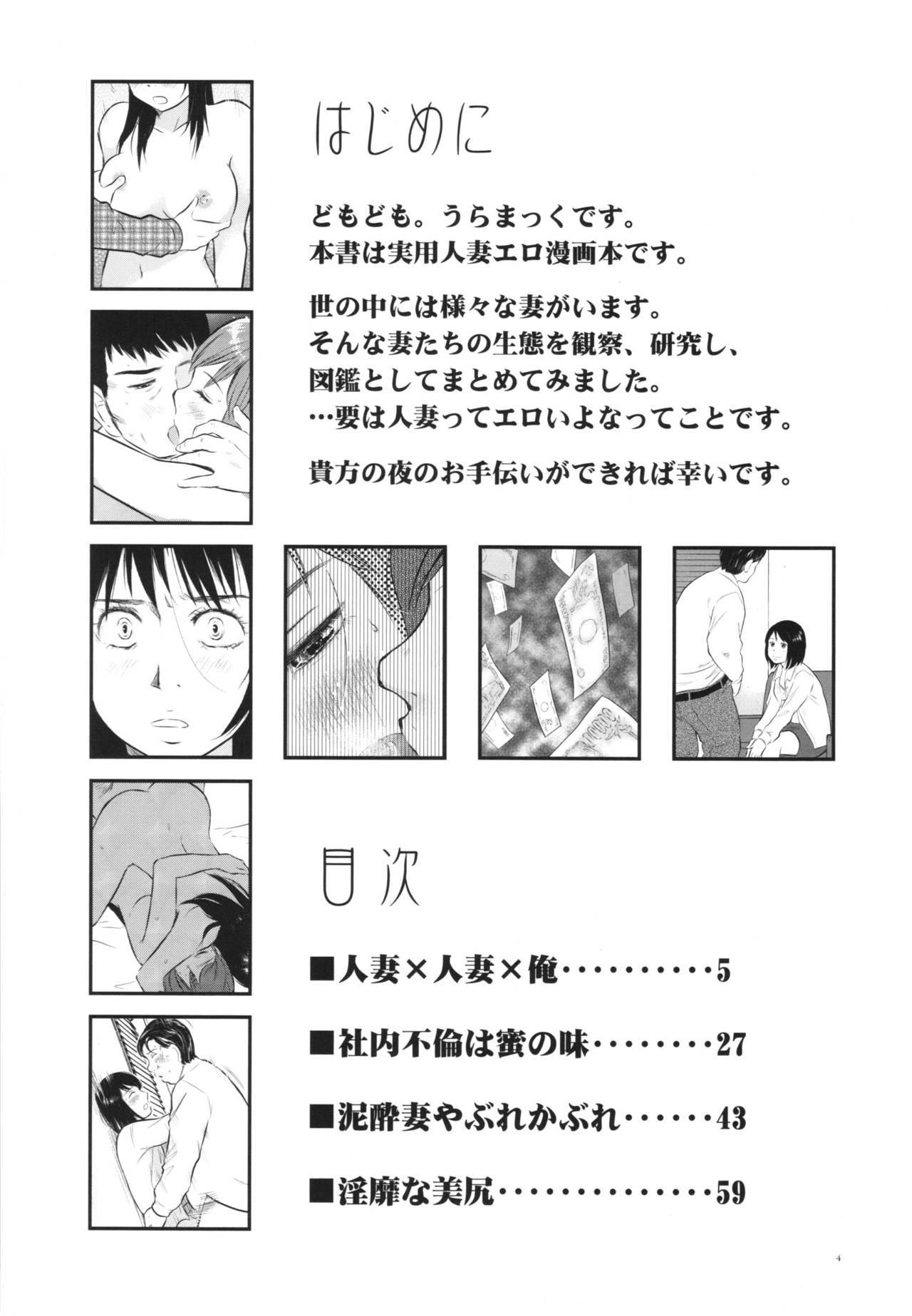 Hitozuma Zukan 2 3