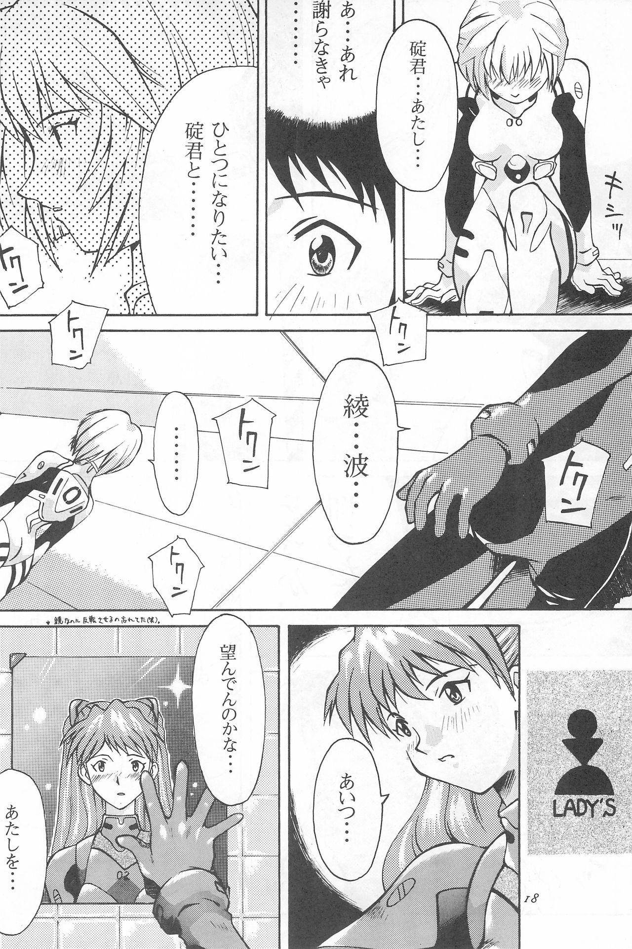 Youseiki Evanlolibon 17