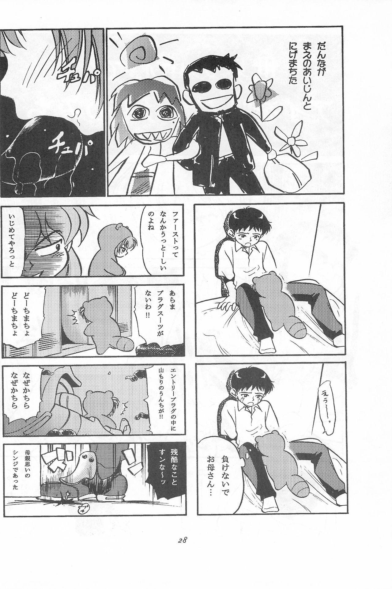 Youseiki Evanlolibon 27