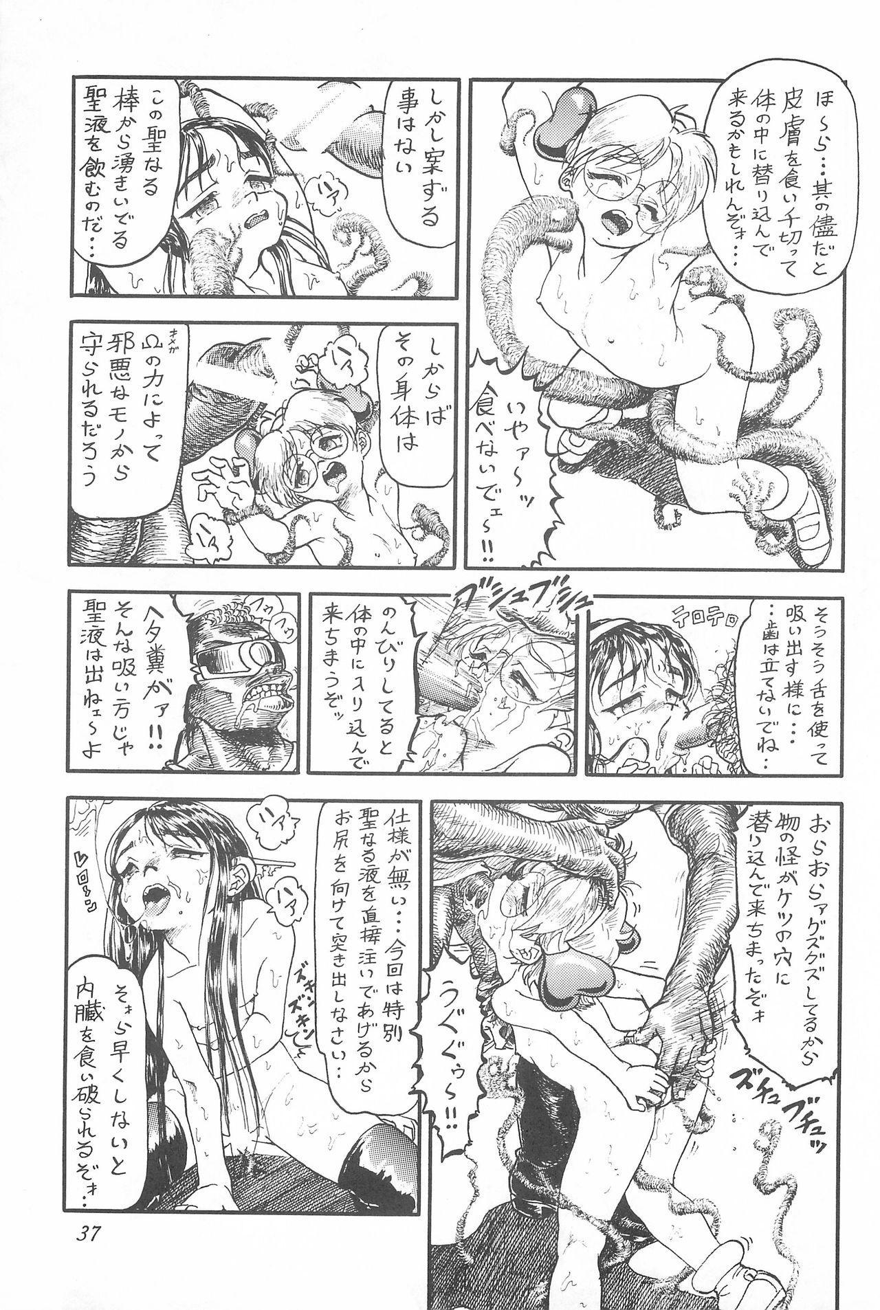 Youseiki Evanlolibon 36