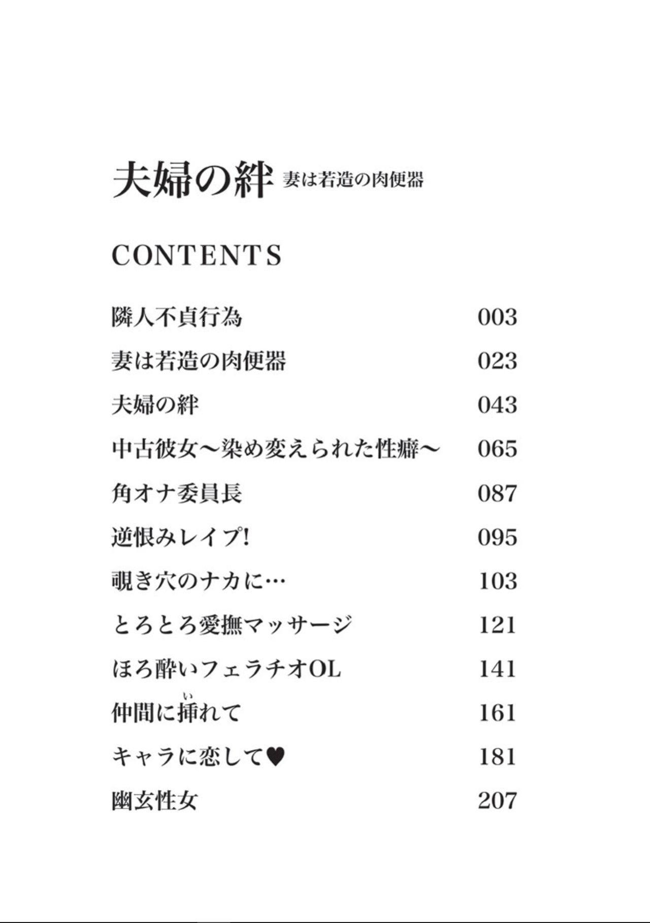 Fuufu no Kizuna 1