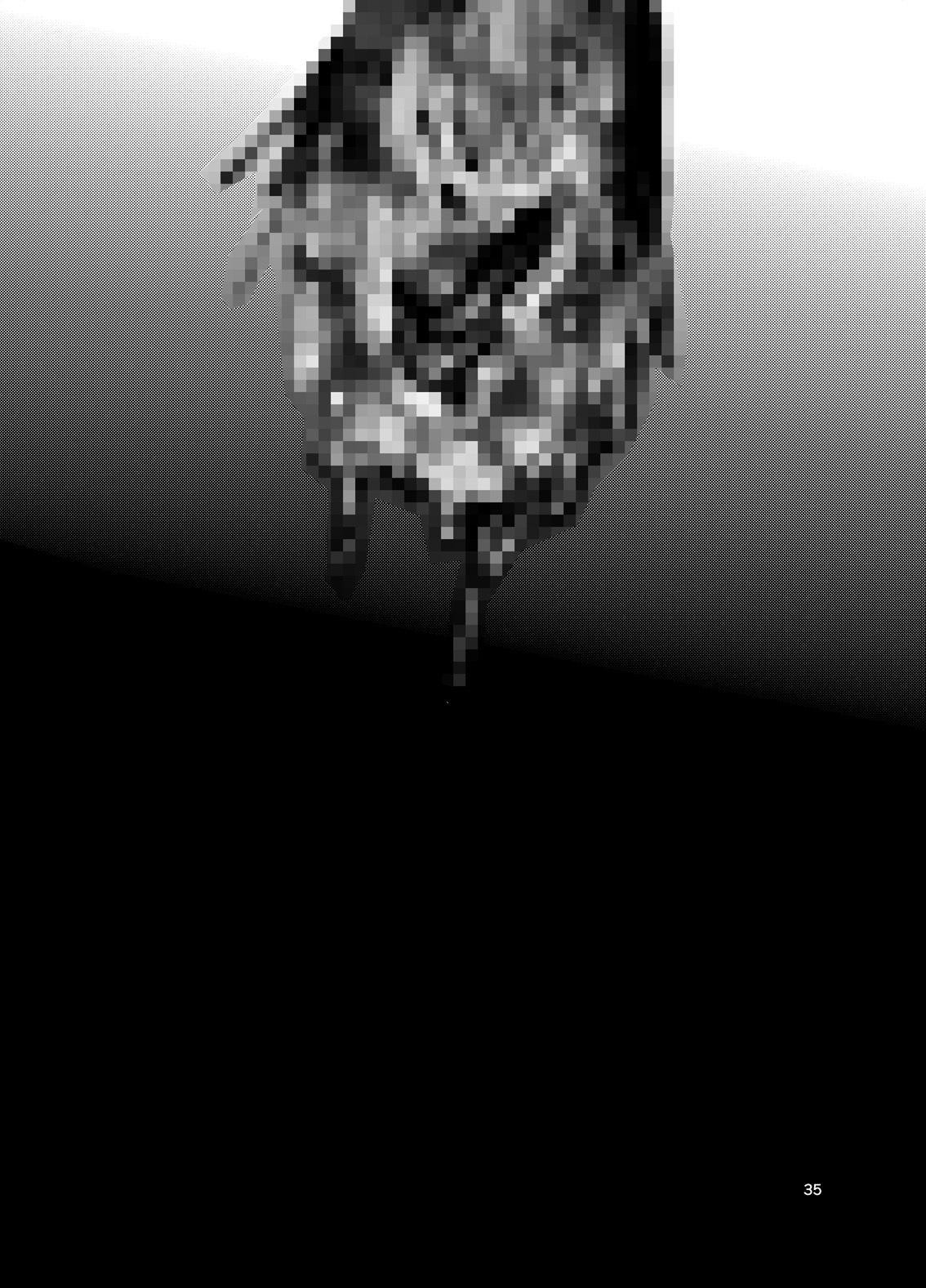 Tonketsu | Pig Hole 34