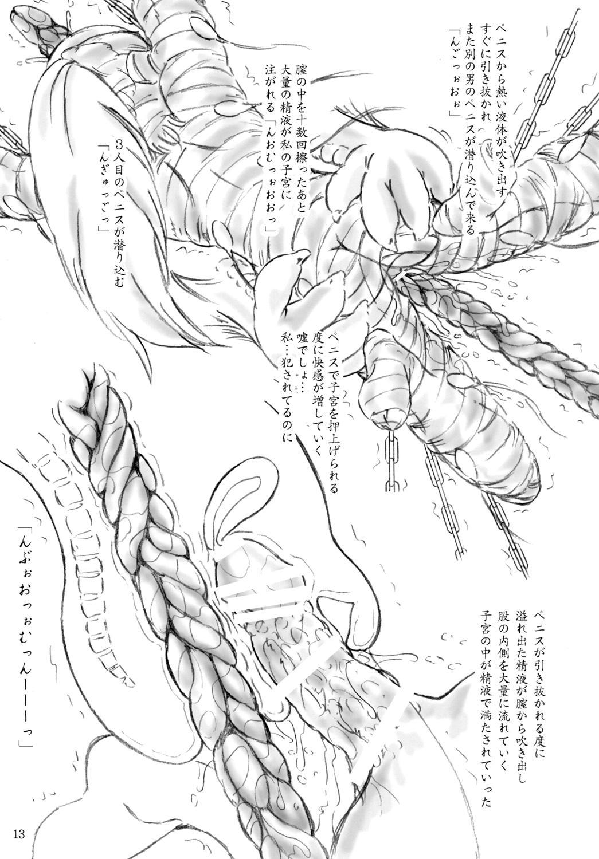 Ikenie Shuuyoujo 12