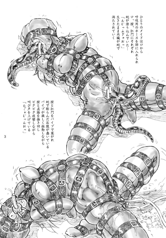 Ikenie Shuuyoujo 2