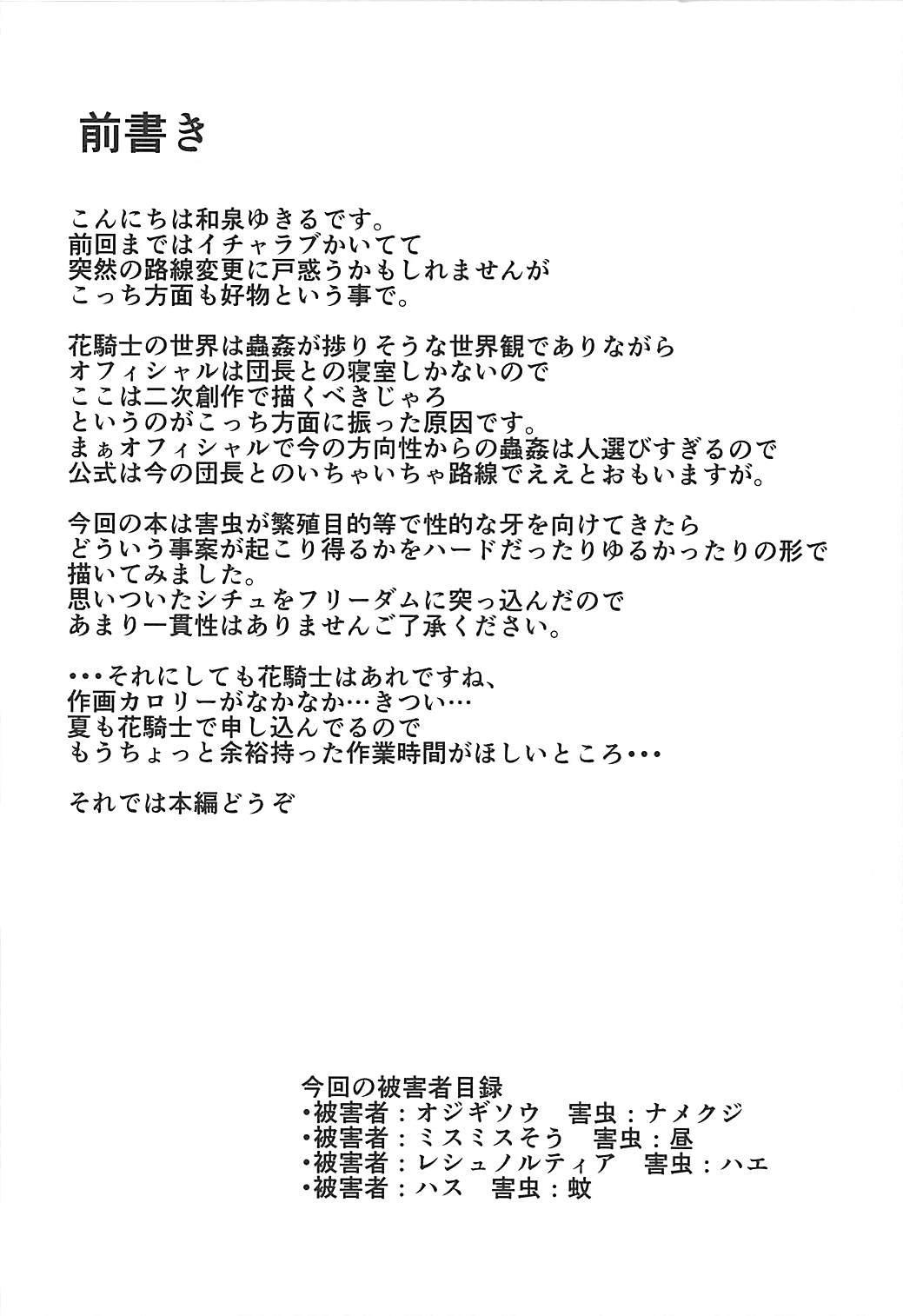 Gaichuu Higai Houkokusho 2