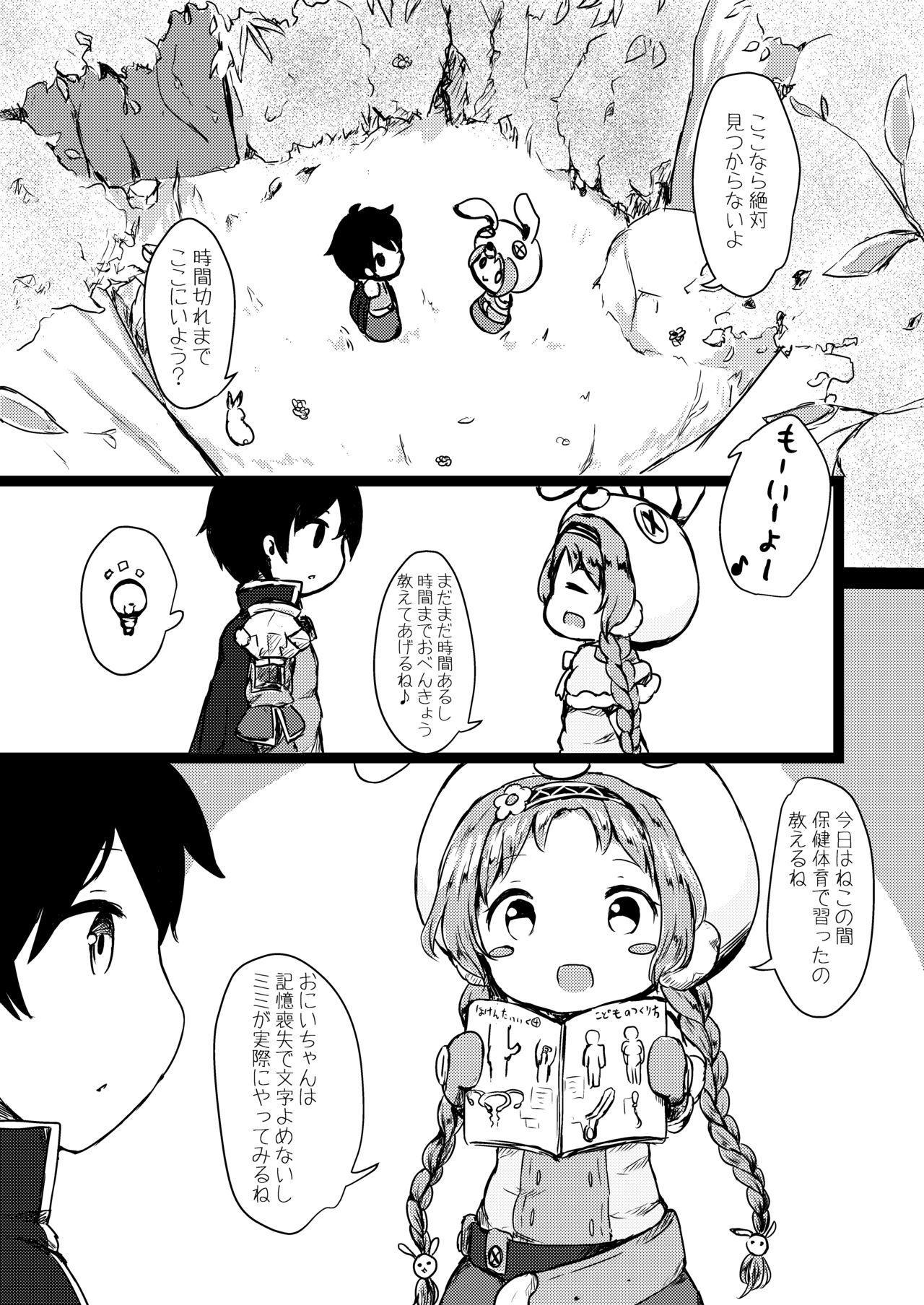 Hatsujou Usagi-san Slash 3