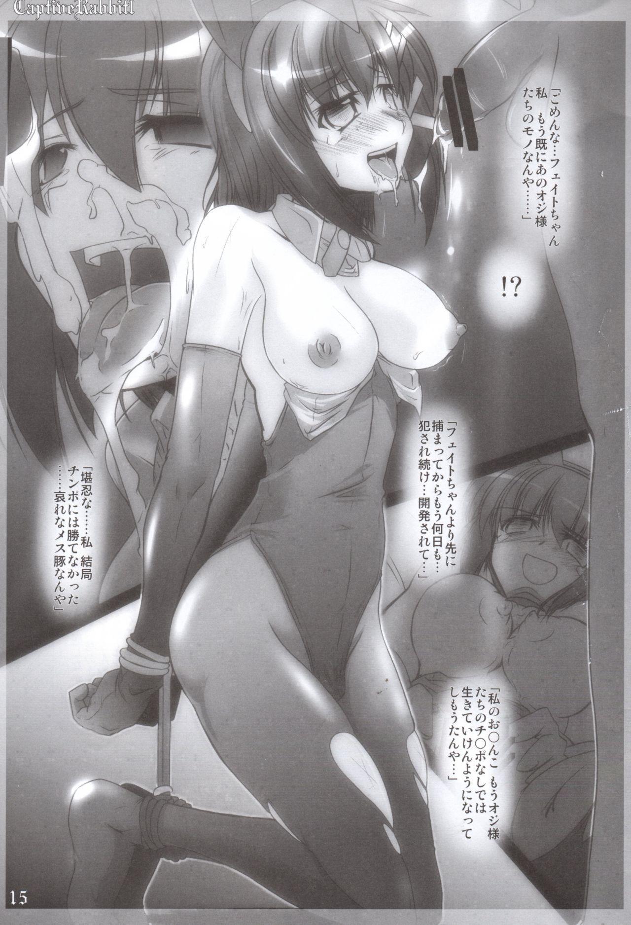 Captive Rabbitl 15