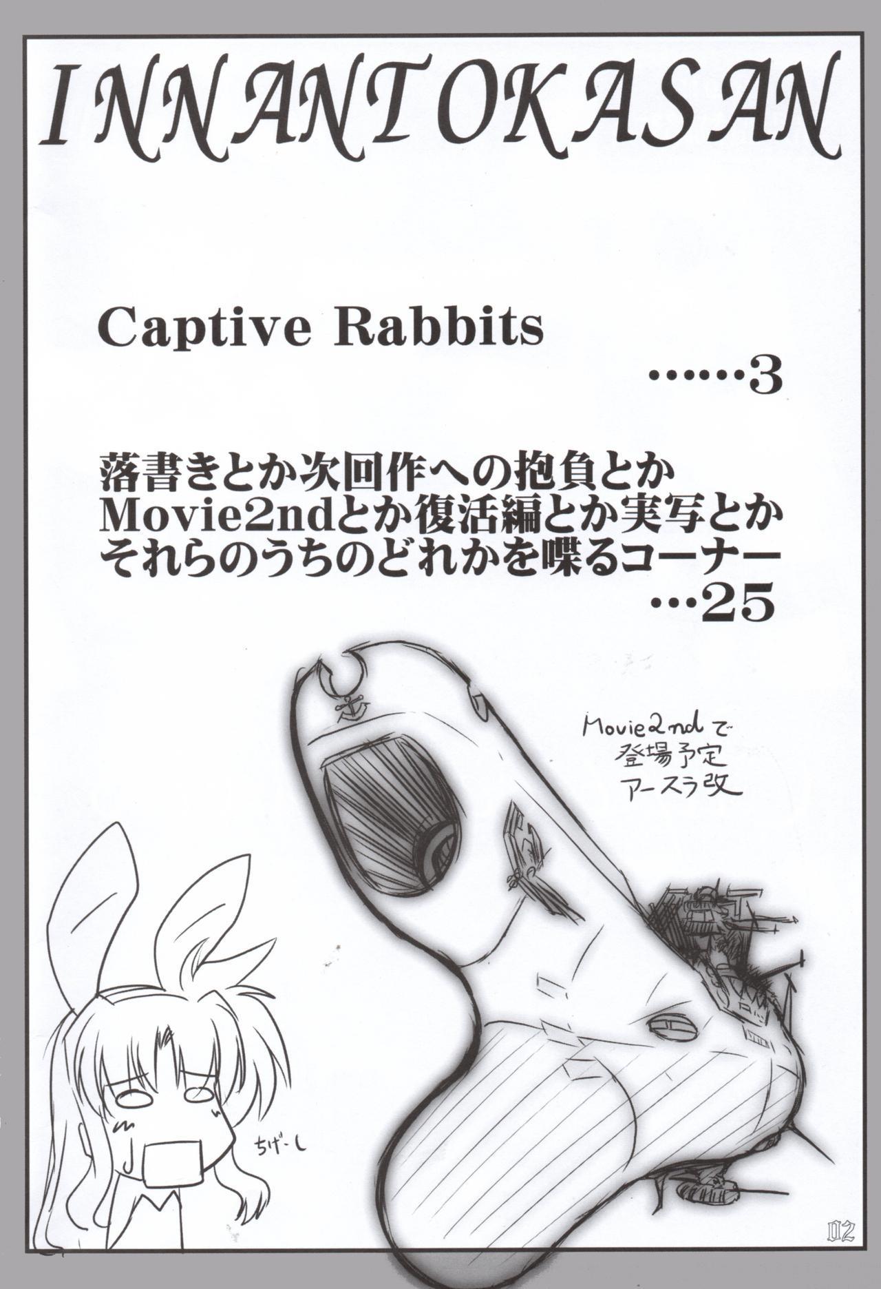 Captive Rabbitl 2