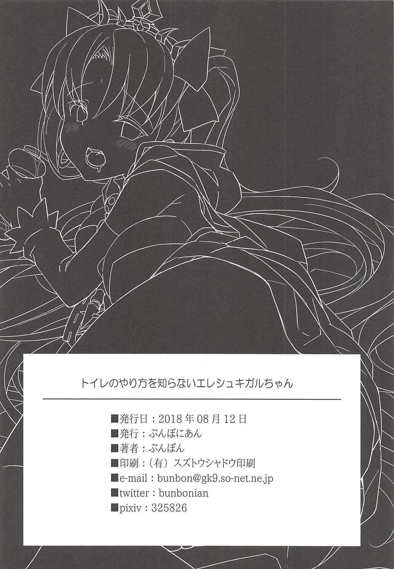 Toile no Yarikata o Shiranai Ereshkigal-chan 21