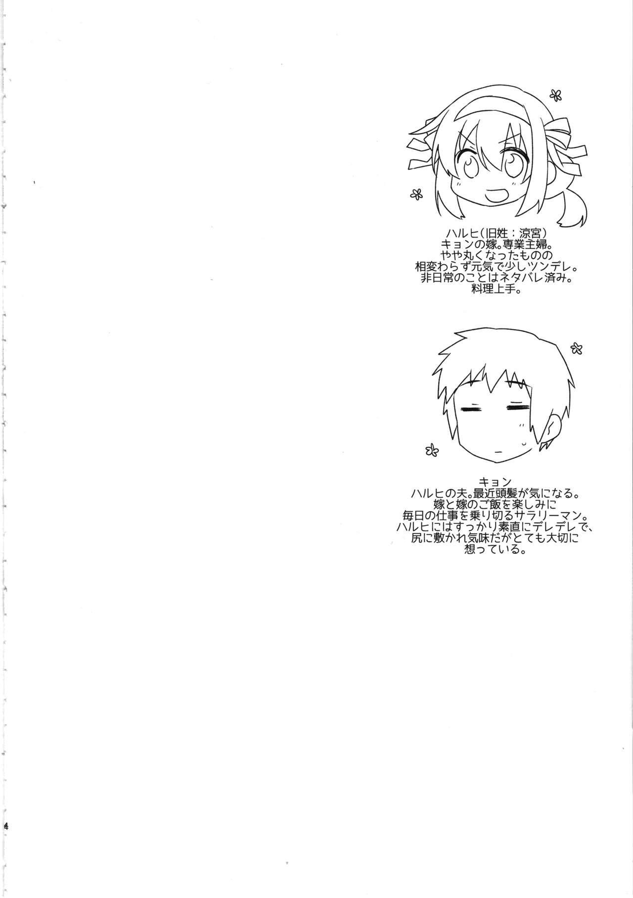 Haruhi wa Ore no Yome 2