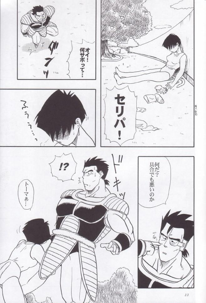 Wakayo 33