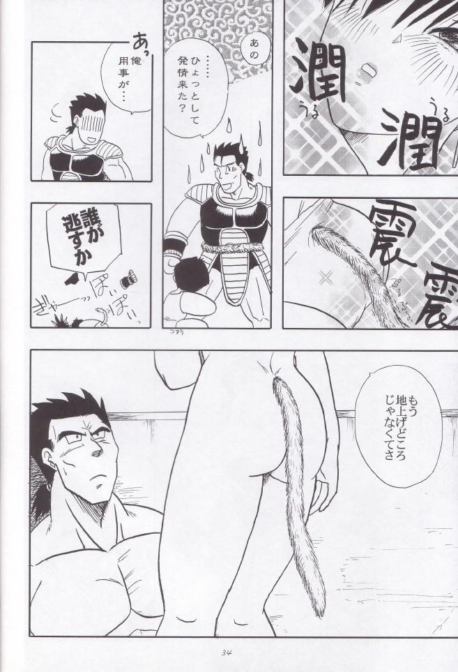 Wakayo 34