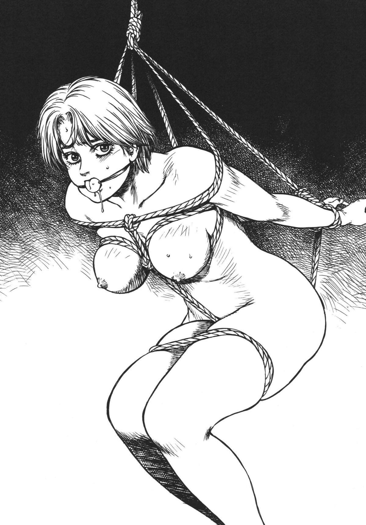 Anko Kudou Shinkaigyo Kaiga Senshuu 15