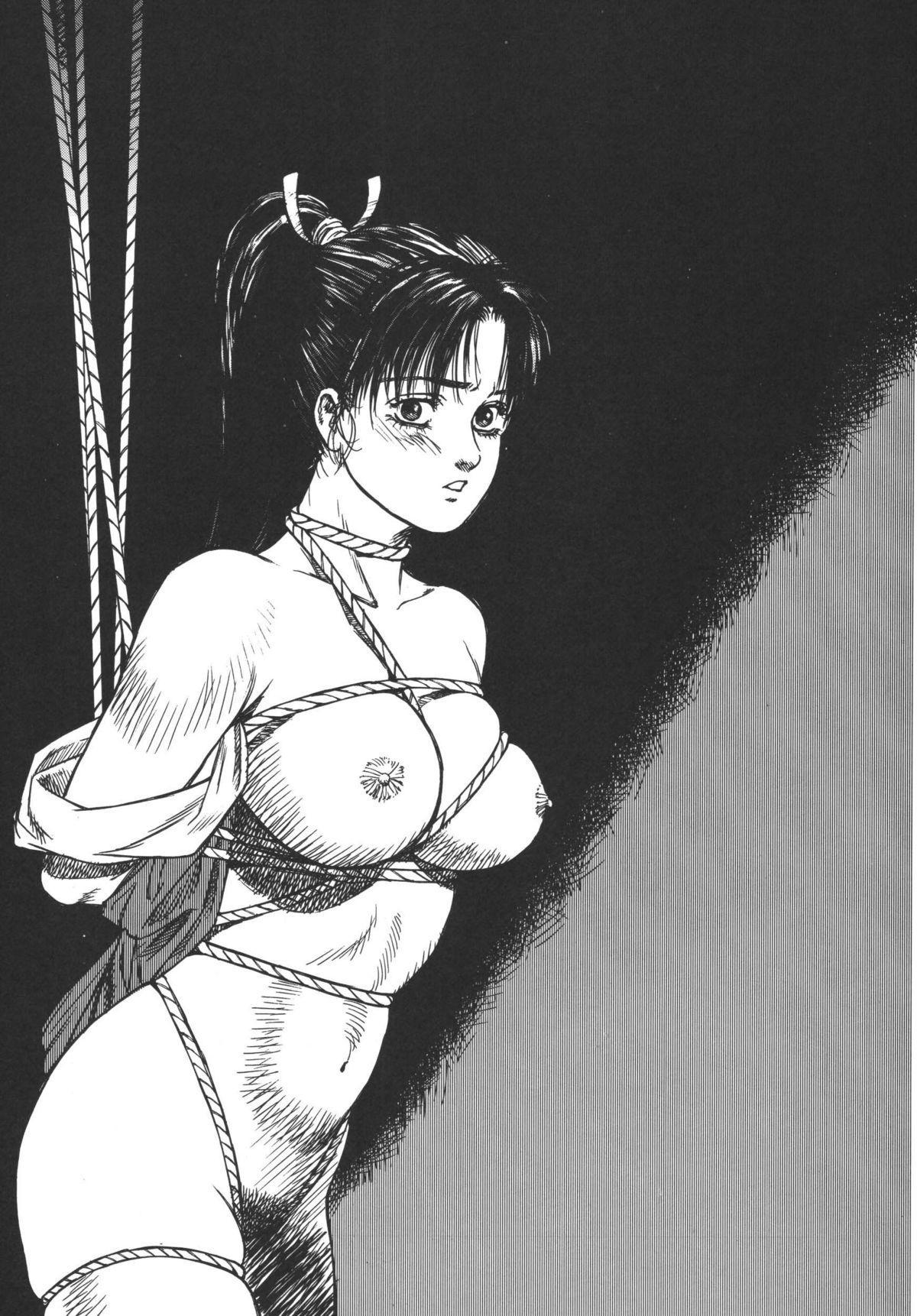 Anko Kudou Shinkaigyo Kaiga Senshuu 4