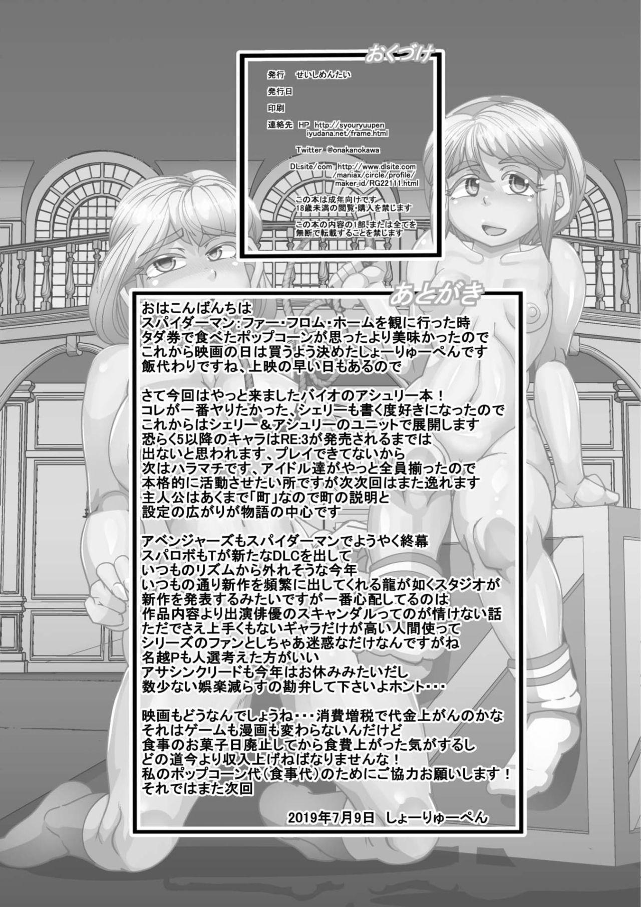 Seisyoku Saigai 4 29