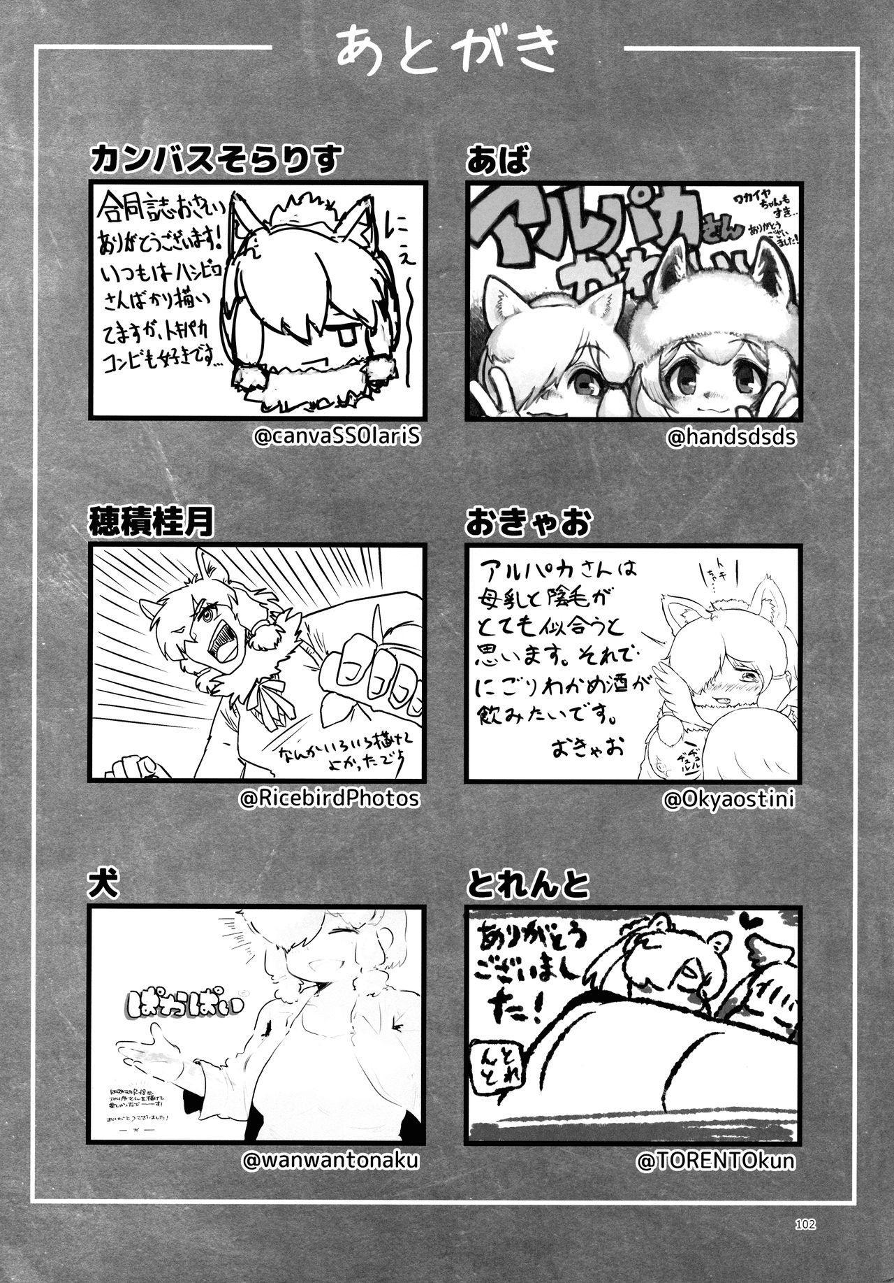 Fuwaaa! Irasshaai! Ura Iyashi no Alpaca-san Goudou 101