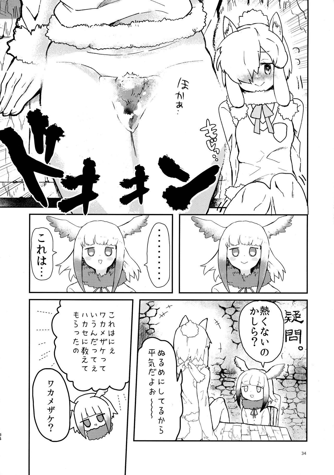 Fuwaaa! Irasshaai! Ura Iyashi no Alpaca-san Goudou 33