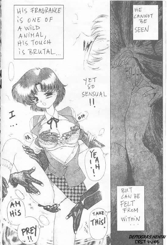 Sailor X 3 7