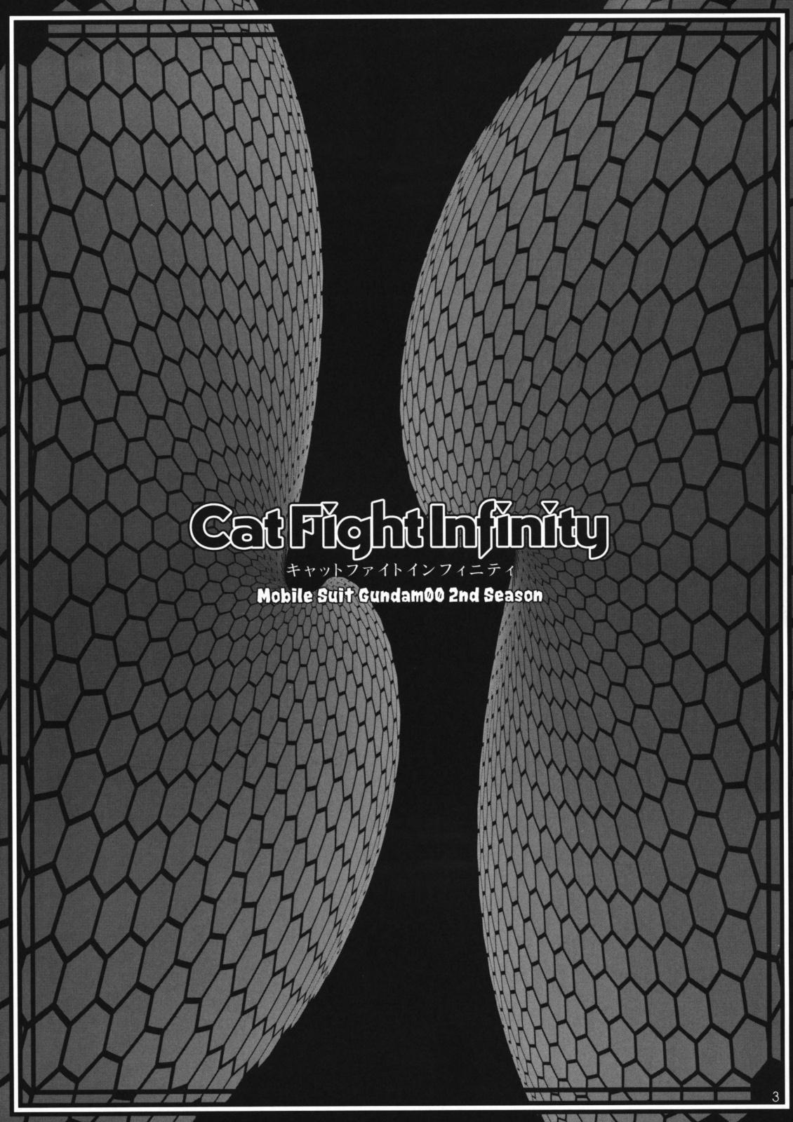 CatFight Infinity 1