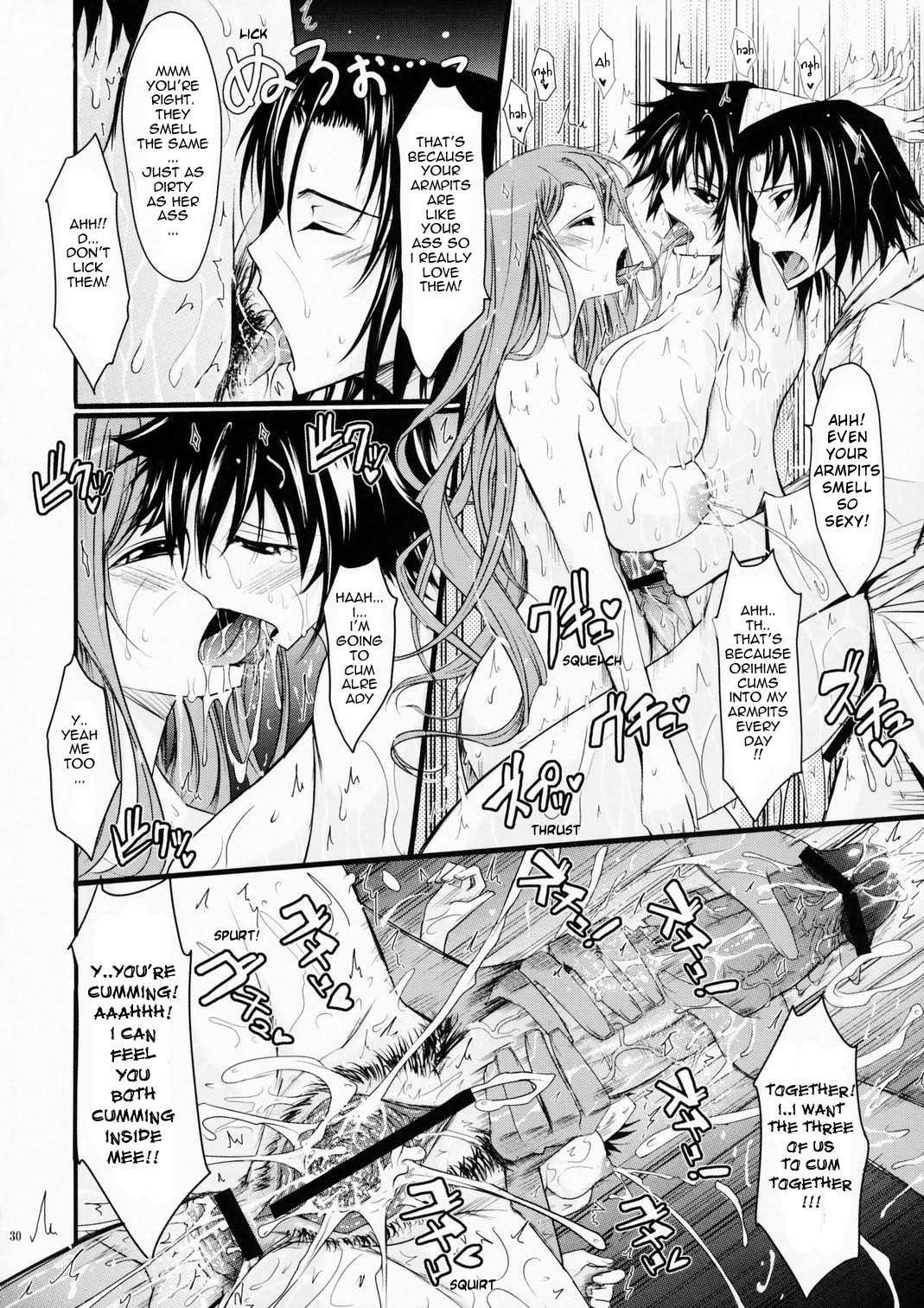 (C75) [Garyuh Chitai (TANA)] Aki-Akane -Sequel 1- (Bleach) [English] 28