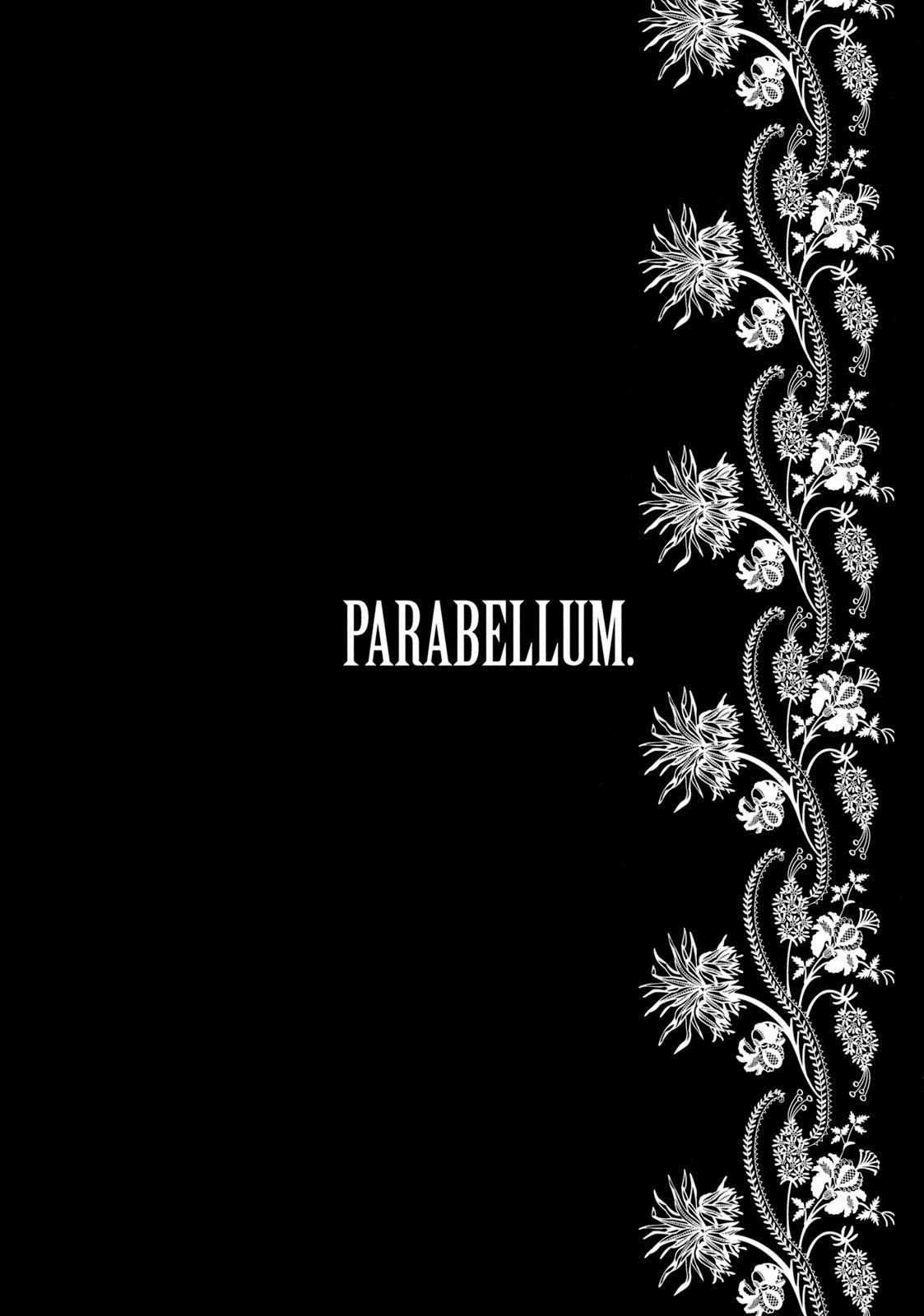 Parabellum 2