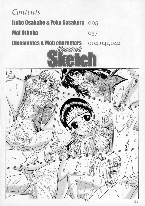Secret Sketch 2