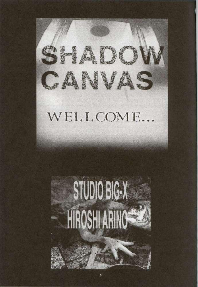 Shadow Canvas 13 1