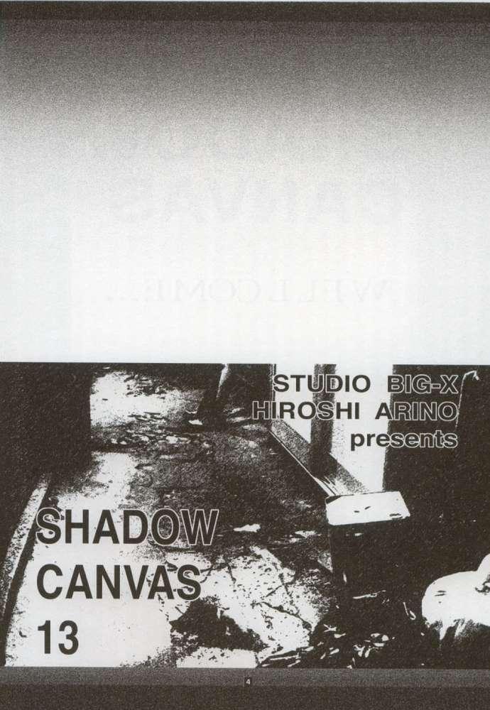 Shadow Canvas 13 2
