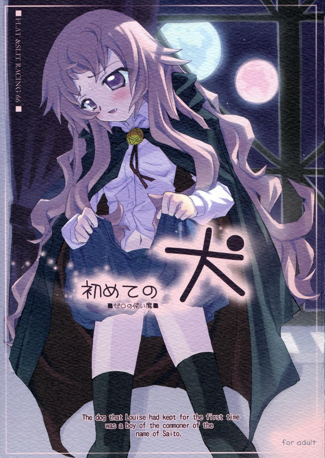 Hajimete no Inu 0