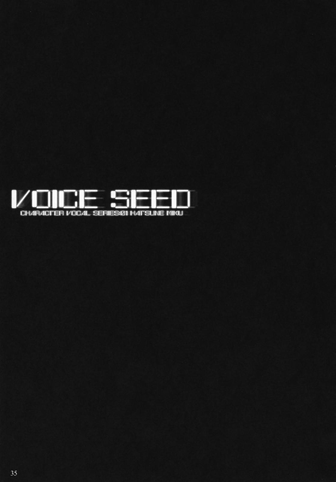 Voice Seed 33
