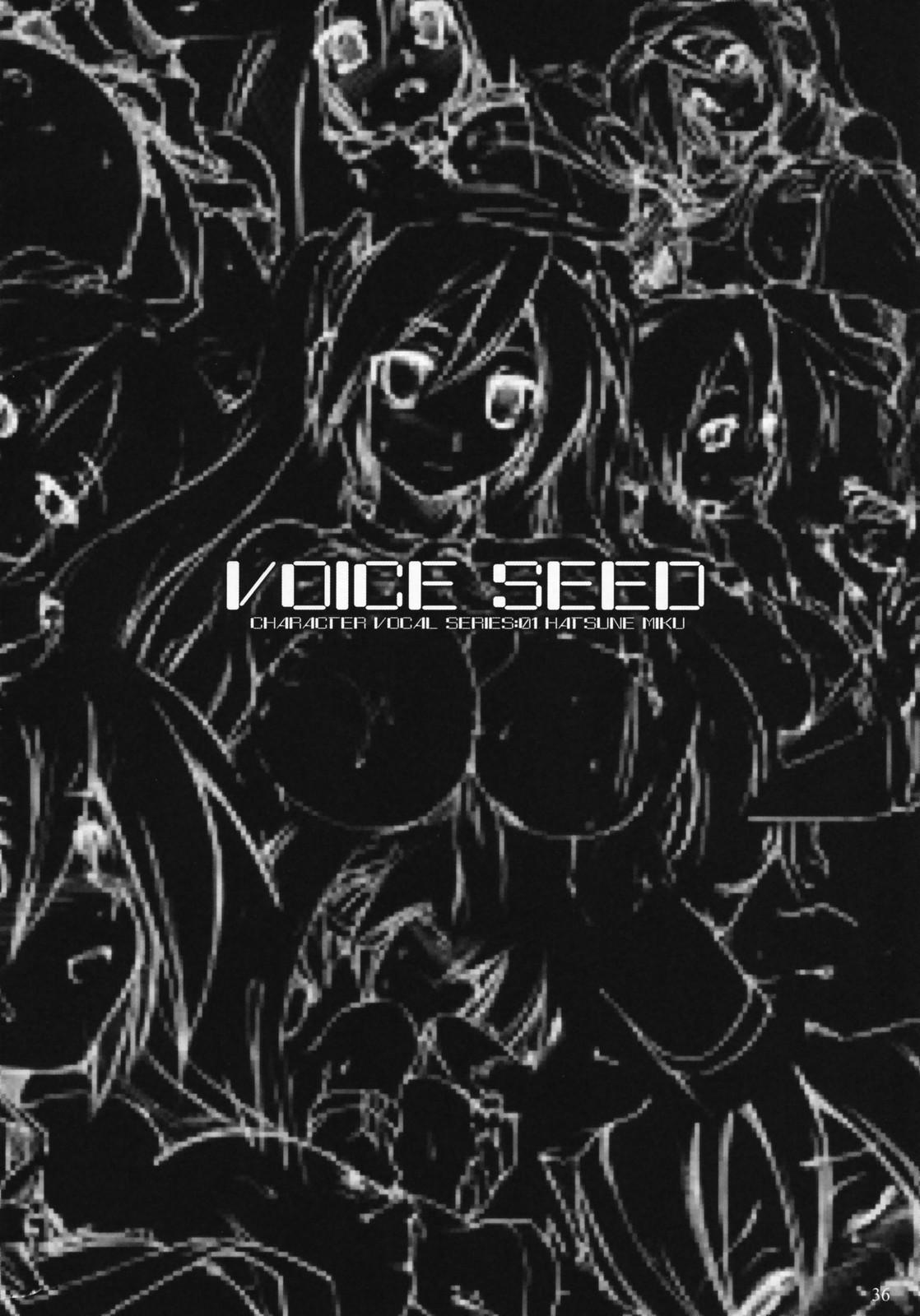 Voice Seed 34