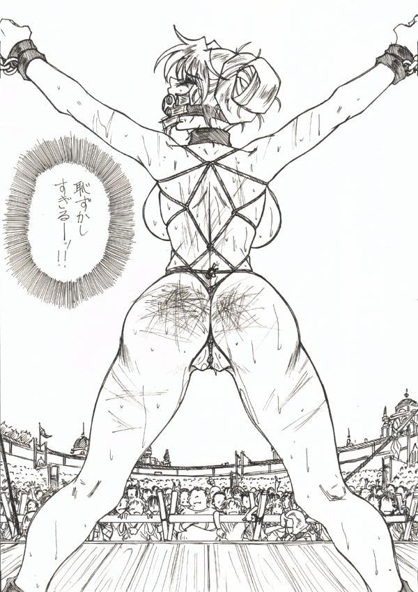 Injoku Hime 22