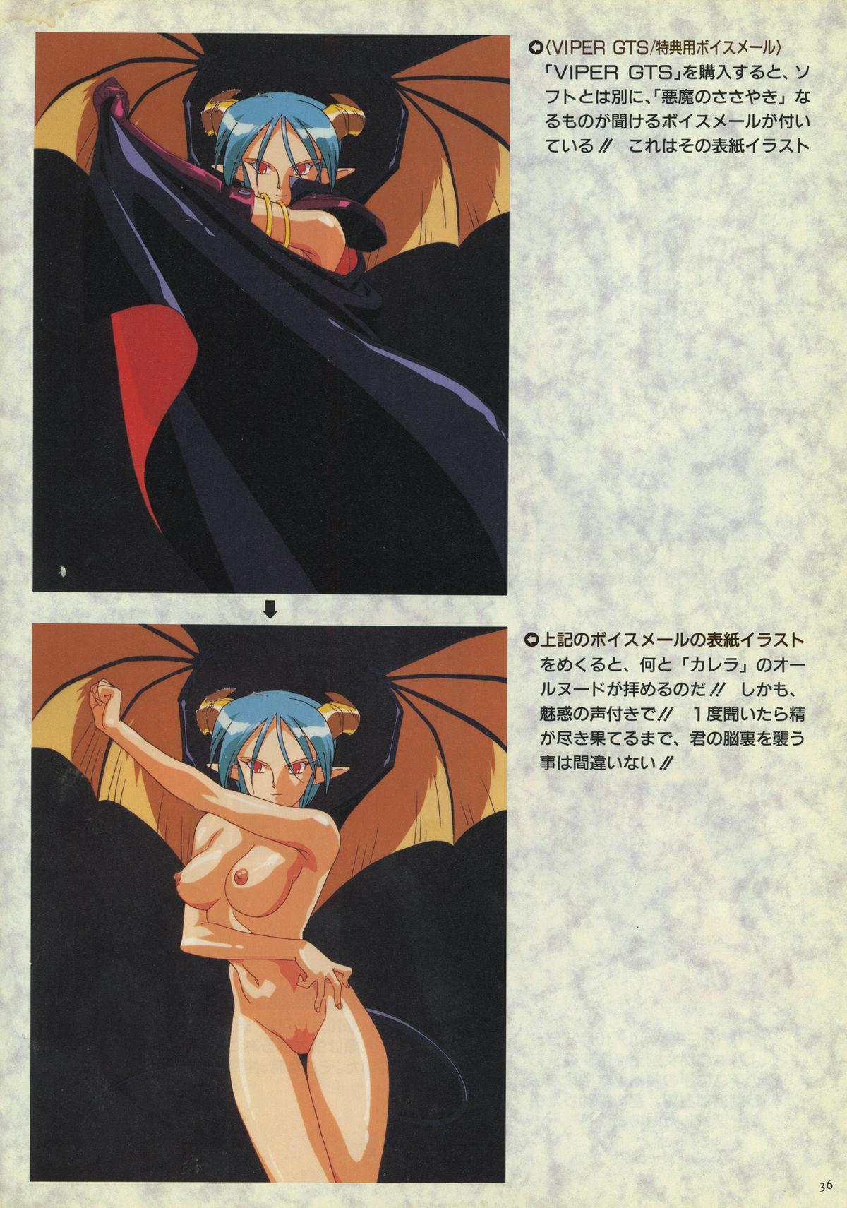 VIPER Series Official Artbook 34