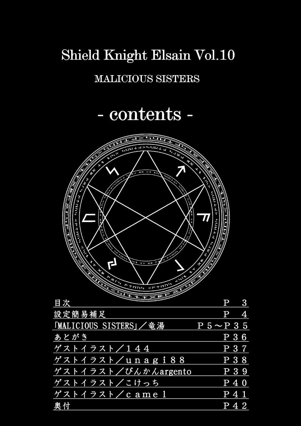 Shield Knight Elsain Vol.10 MALICIOUS SISTERS 1
