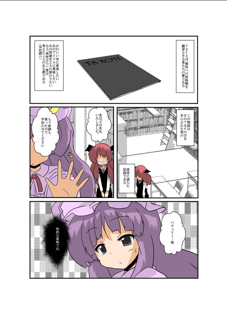 Touhou TS Monogatari 4