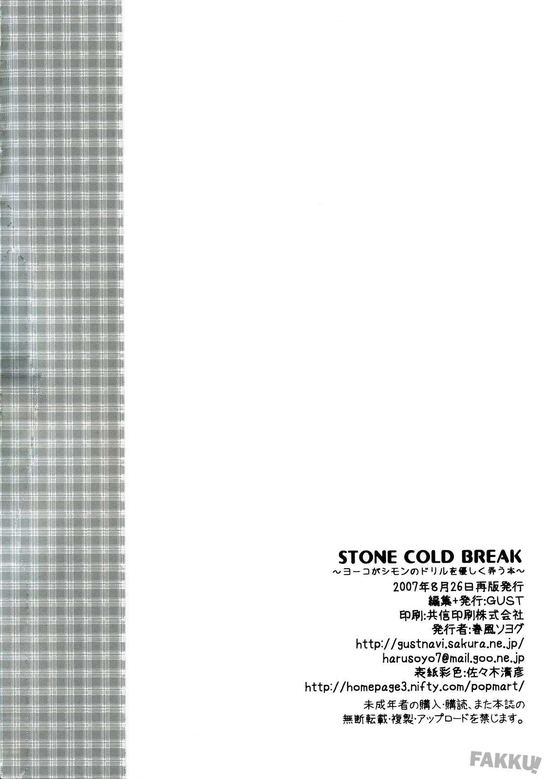 Stone Cold Break 17